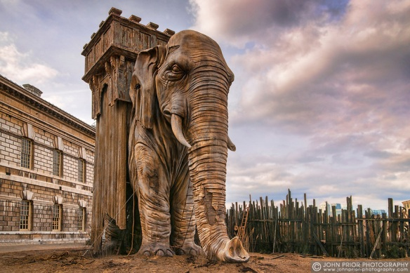Elephant8228