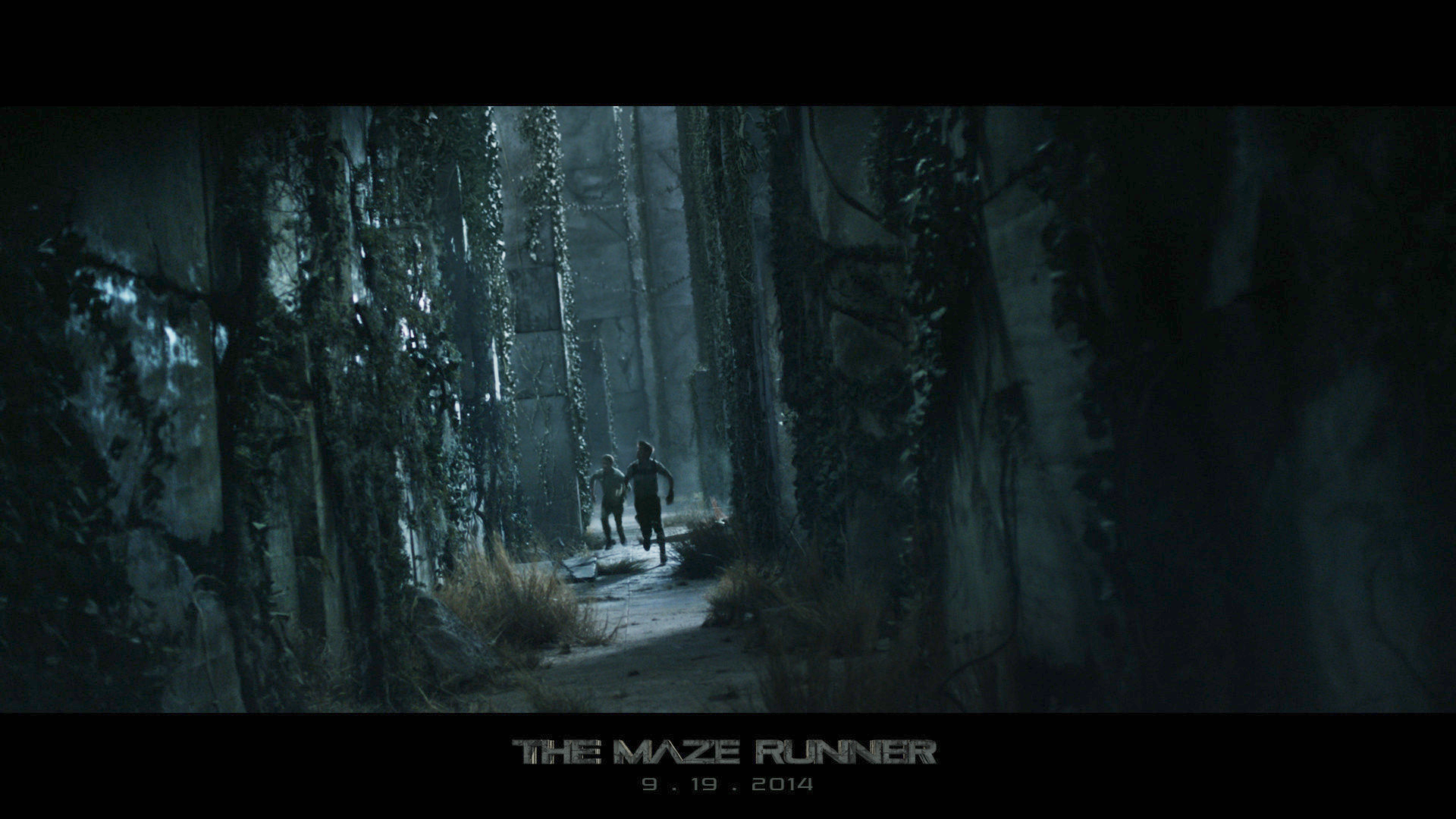 Running through the Maze of Dystopian Movies: The Maze ...