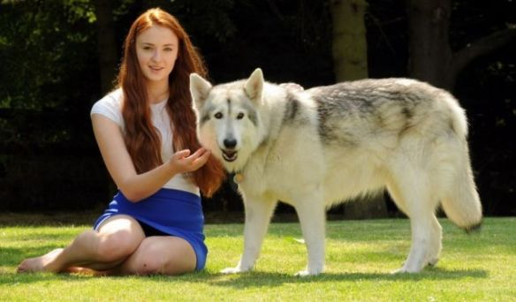 Sophie Turner got to keep her direwolf, though. There needed to be a happy thing.