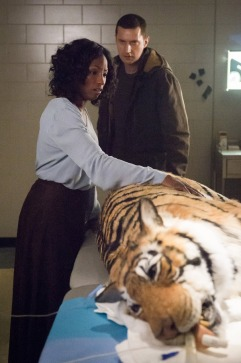 hannibal season 3 tiger