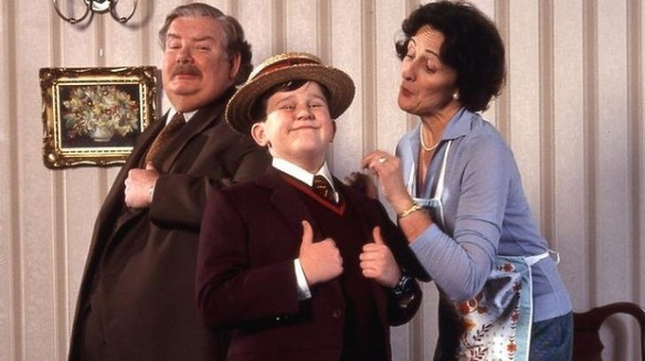 Harry Potter The Dursleys