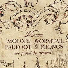 Messrs. Moony, Wormtail, Padfoot, and Prongs might have been assholes, but they weren't bigots.