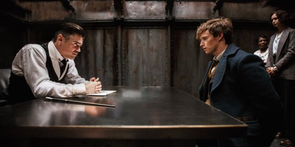 Totes Not Grindelwald: What makes Albus Dumbledore think so highly of you? ... and is he still beautiful and perfect? Newt: ... what?