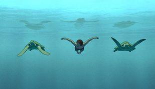 The Red Turtle Son Swim